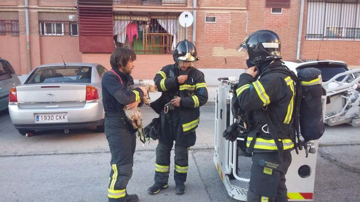 Una mujer y su perro, rescatados de su vivienda tras un incendio en Entrevías