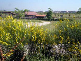 Más de dos millones para Bosquesur, el parque de los cuatro municipios