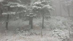 Previsión de acumulación de nieve de hasta 18 centímetros en cota de 1.000 metros