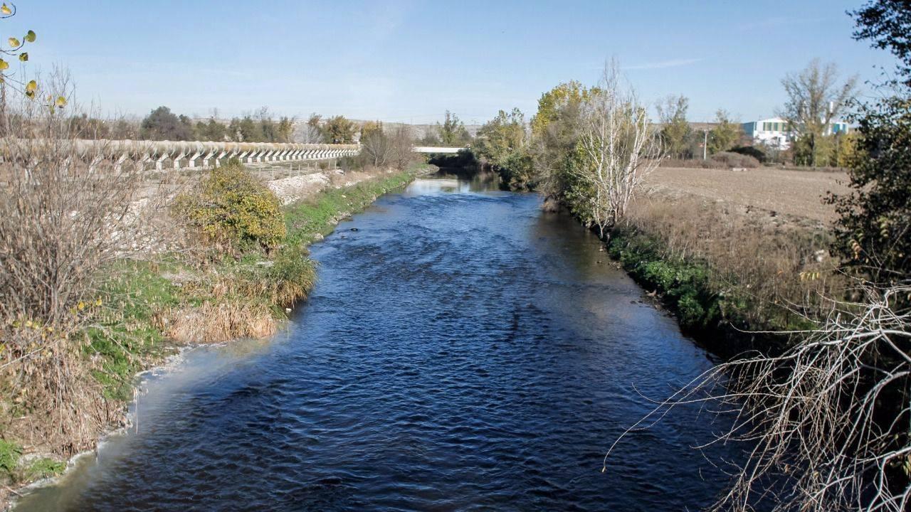 El canal de isabel ii destina 29 5 millones a mantener y for Viveros madrid sur