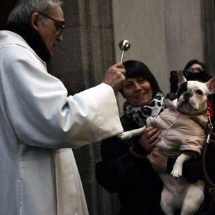 Teatro, charlas y bendición de mascotas se citan en San Antón