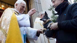 El padre Ángel bendice a una mascota en el día de San Antón
