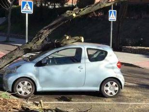 Los fuertes vientos causan heridos en la capital y la alerta se mantiene en la sierra