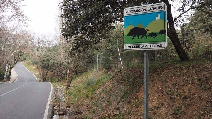 Señal informativa de la presencia de jabalíes en Torrelodones similares a las que se instalarán en Aranjuez