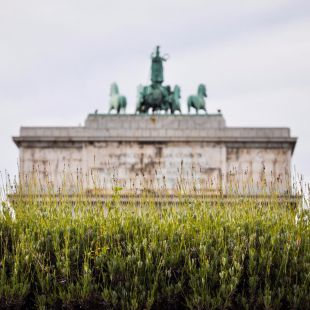 Lo que cuesta dar luz al Arco de la Victoria franquista de Moncloa