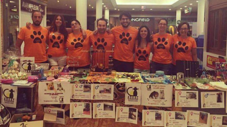 Colmenar Viejo celebra este sábado una jornada de adopción de animales