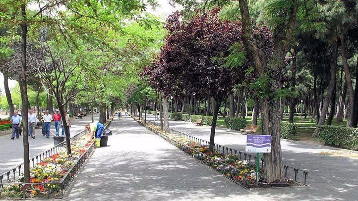 ¿Qué opinas de las zonas verdes de Madrid?