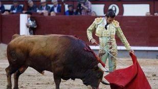 San Isidro: oreja de escaso fuste a David Mora en otro festejo de bicornes descastados