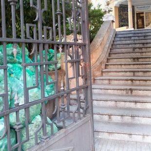 La basura 'fantasma' del complejo de Madrid Salud en Montesa