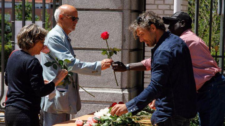 """Un rosal francés gana el concurso de rosas """"Villa de Madrid"""""""