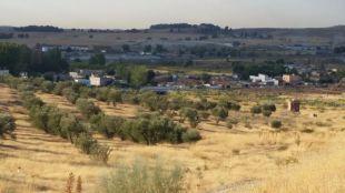 Cañada Real a su paso por Rivas-Vaciamadrid