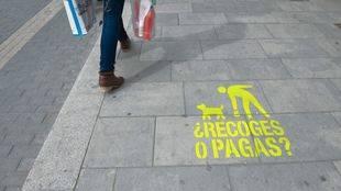 Valdemoro multará con 600 euros a los dueños que no recojan las heces de los perros