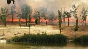 La Comunidad pide colaboración ciudadana para luchar contra los incendios forestales