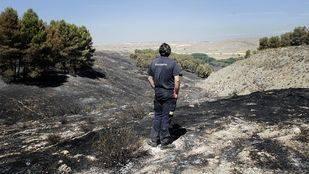 Así han quedado Los Cortados tras el incendio: 70 hectáreas quemadas