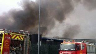 Piden ayuda para rescatar a animales de un albergue cercano a un incendio en Campo Real