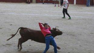 Terminan sin heridos por asta de toro los encierros de las Fiestas de Nuestra Señora de Butarque