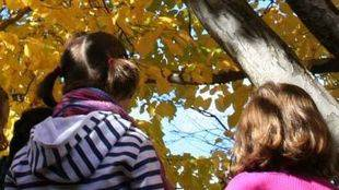 Se reanudan los talleres del Botánico en los Centros de Educación Ambiental