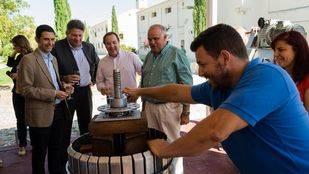 La venta de Vinos de Madrid aumenta más de un 3% durante el primer semestre de 2015