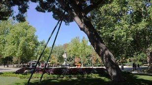 El Ayuntamiento creará una escuela de jardinería y plantea contratar becarios y más personal