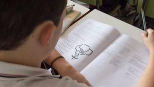 Unos 67.711 alumnos de 6º de Primaria realizan la prueba LOMCE
