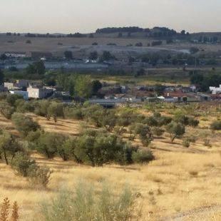 Cañada Real a su paso por Rivas-Vaciamadri (archivo).