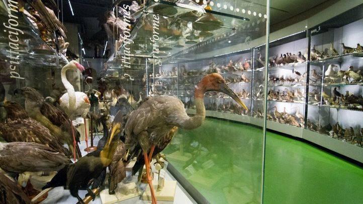 El lado más íntimo de los museos