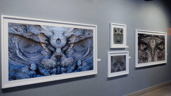Exposición de fotografía 'Bestiario' del fotógrafo Guillem Vidal en el museo Nacional de Ciencias Naturales.