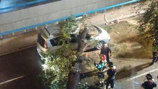 Cae un árbol sobre dos coches aparcados y uno que venía circulando en Embajadores