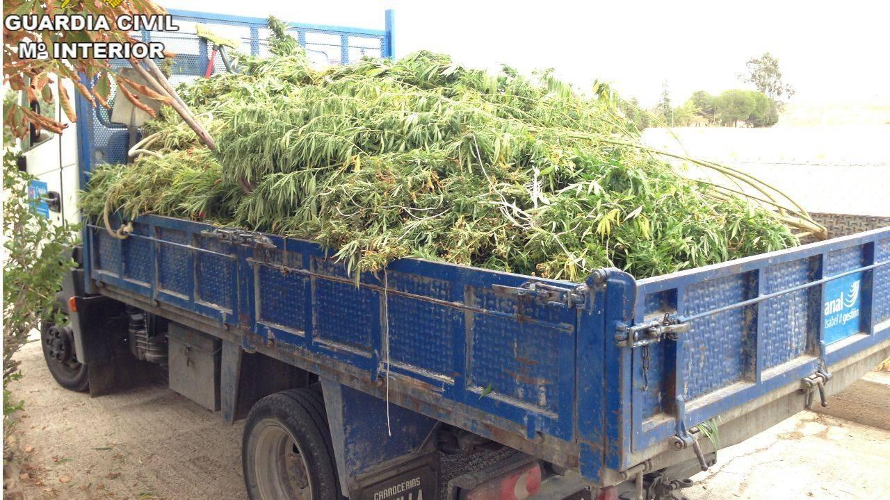 Resultado de imagen de camion marihuana