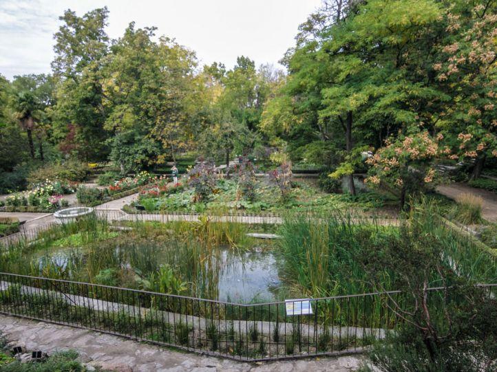 Un 'estanque-laboratorio' en el Jardín Botánico