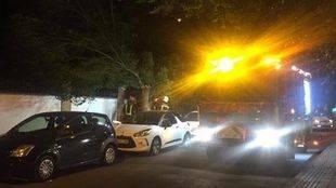 Los bomberos intervienen en la calle Presa, de San Fernando de Henares, por el desplome de un árbol.