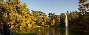 El otoño, a través del objetivo de Madridiario