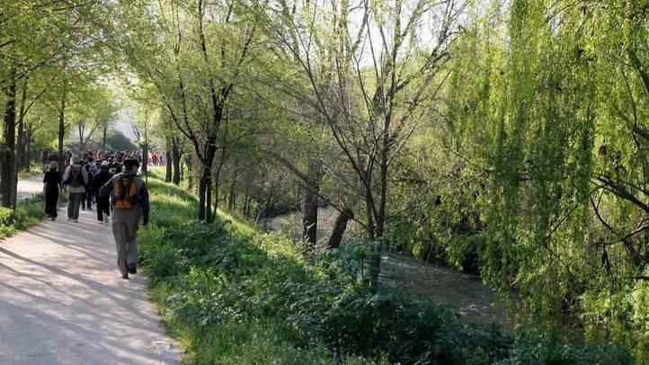 Parque lineal del Manzanares a su paso por el distrito de Villaverde.