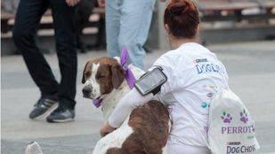 Una participante con su perro en el Perroton 2014. (Archivo)