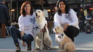 Vuelve la 'SanPerrestre' para reclamar un mayor acceso con perros a espacios públicos