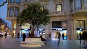 CaixaBank pone en marcha la primera iniciativa del sector financiero en España para compensar las emisiones de CO2
