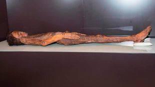 La momia guanche de Herques llega al Museo Arqueológico Nacional