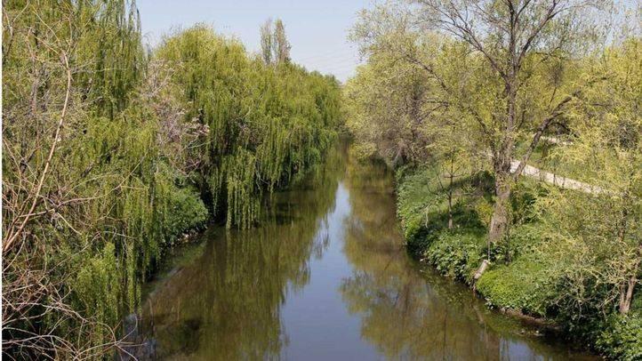 Rio Manzanares a la altura del parque lineal del mismo nombre