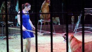 La Junta de Arganzuela pedirá al Ayuntamiento prohibir el uso de animales en espectáculos circenses