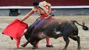 Más de 10.000 firmas piden eliminar los 'toros' de la web turística del Ayuntamiento