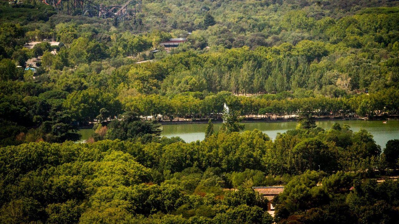 H Bitat Madrid Ofrecer Actividades Para Conocer La Flora