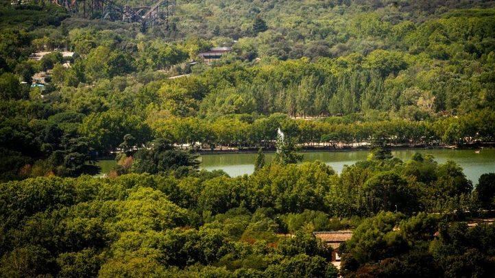 Hábitat Madrid ofrecerá actividades para conocer la flora y fauna de la ciudad