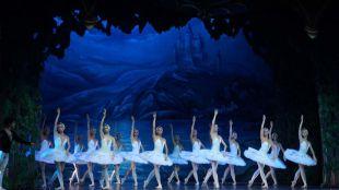 ¿Quiere una entrada para 'El Lago de las Cisnes'?
