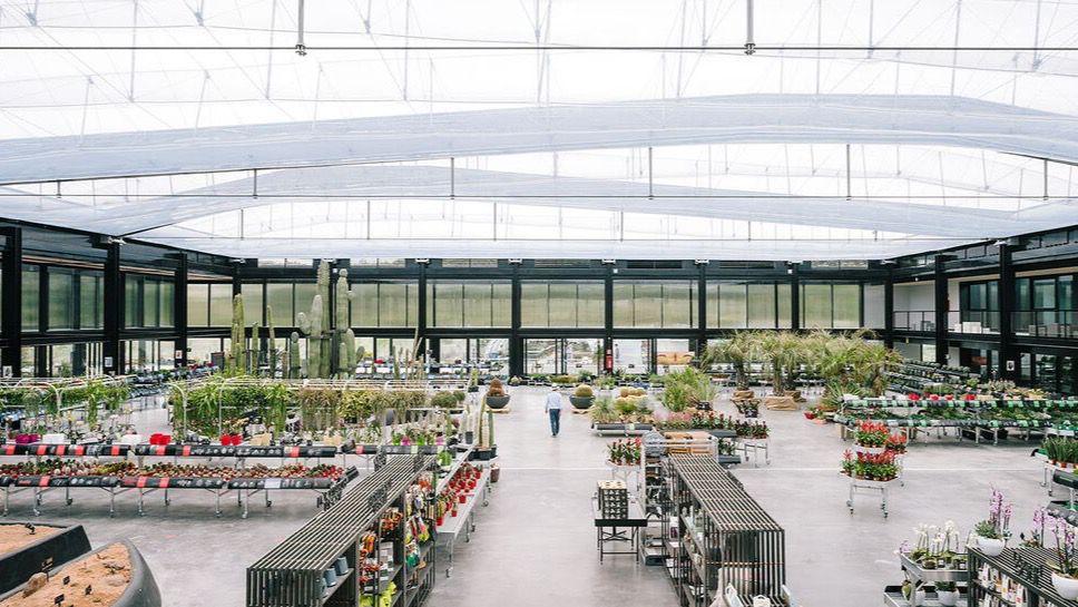 El oasis de cactus m s grande de europa a un paso de madrid madridiario - Jardin de cactus madrid ...