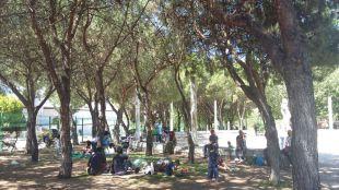 Los refugiados sirios que acampaban en la M-30 han sido trasladados a Guadalajara