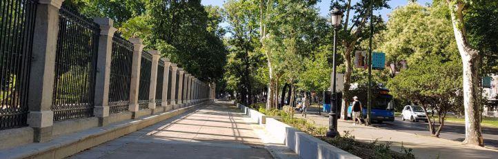 Abierto al público el recorrido peatonal del Paseo del Prado entre la Plaza de Murillo y la Puerta del Rey del Jardín Botánico
