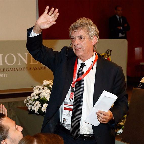 El CSD suspende a Villar como presidente de la RFEF durante un año