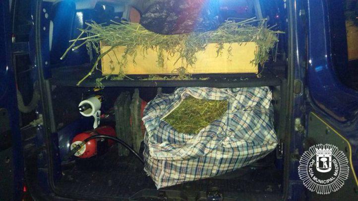Bolsas de marihuana incautadas por la Policía Municipal.