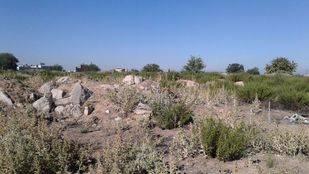 Parcela donde se ubicará un nuevo bosque urbano en Fuencarral