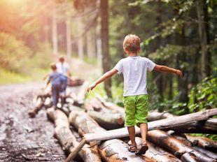 Niños disfrutando de la naturaleza.
